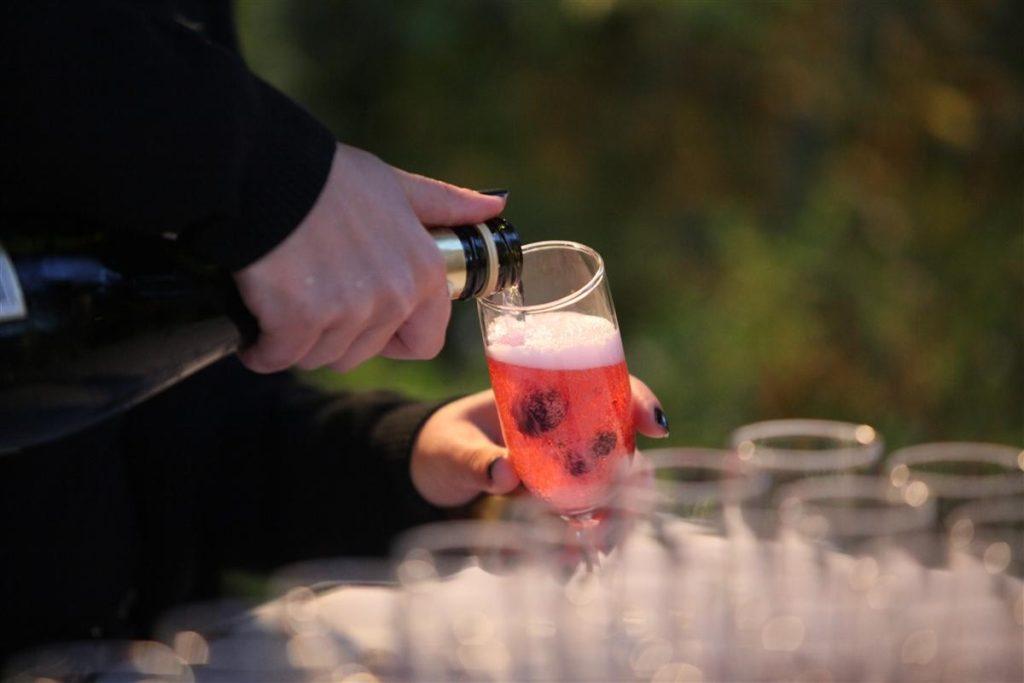 הרמת כוסית לפסח | קווה