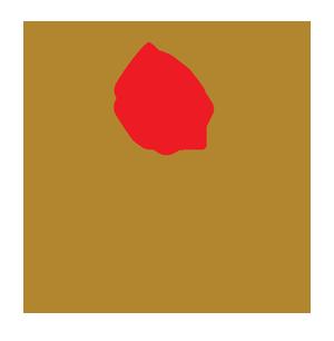 לוגו עלי דפנה - פוטר