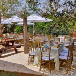 שולחן | חתונה בבית | חתונה בטבע